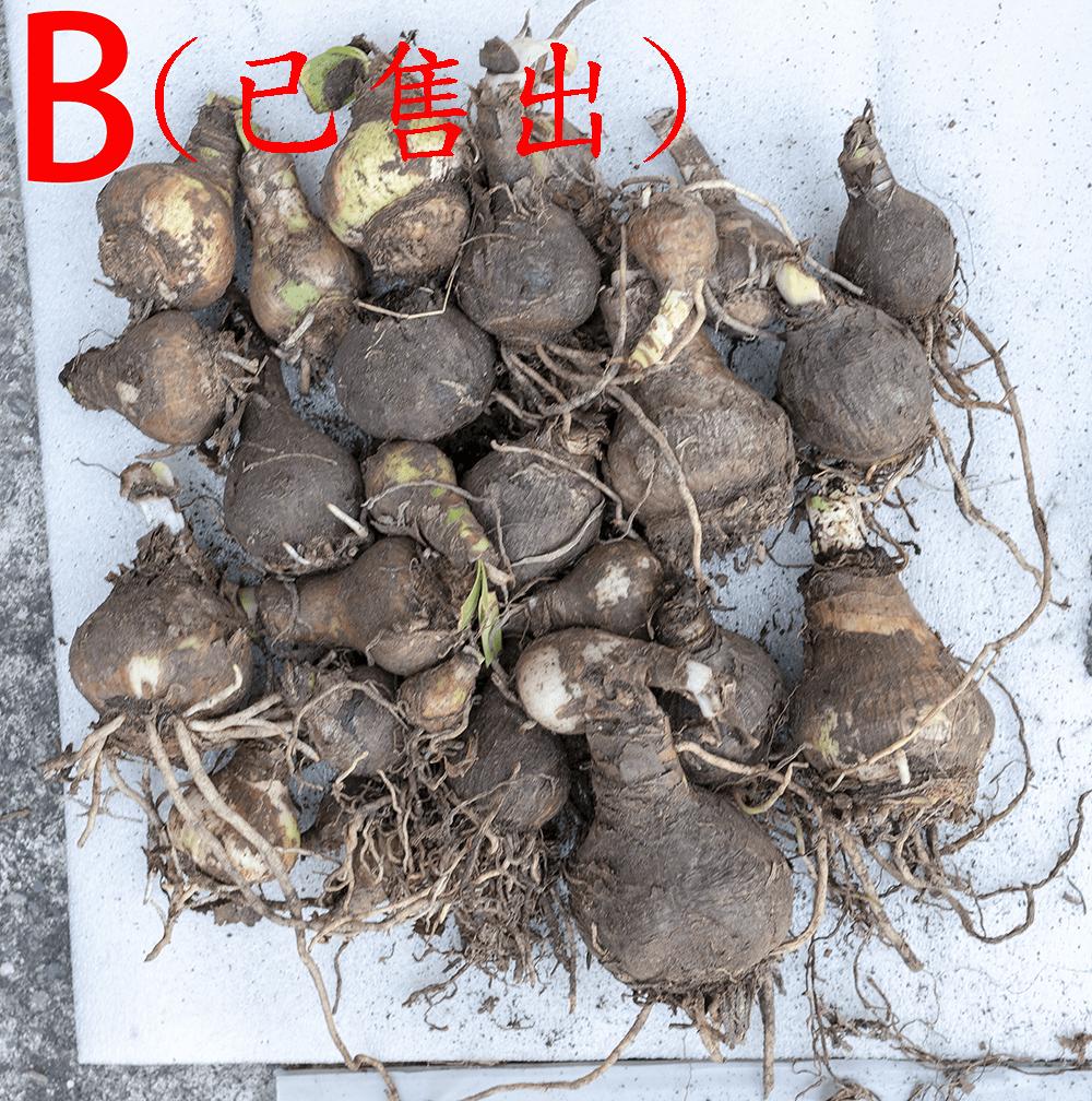 http://pic.hunternet.com.tw/pic/花花/2018-07-10-花花基金-alex-pan/pic-20180710-03.png