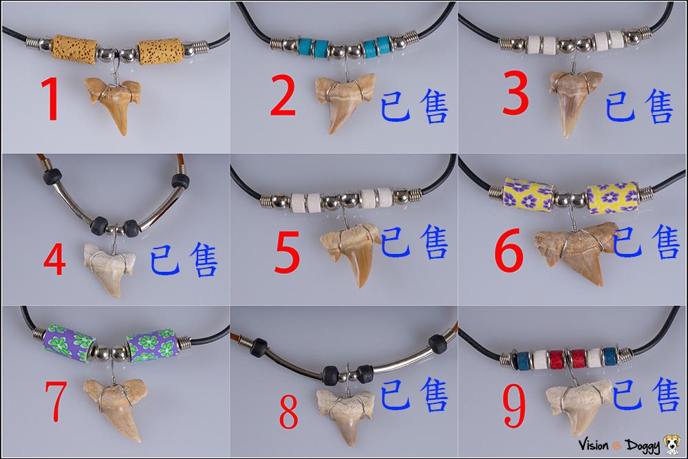 http://pic.hunternet.com.tw/pic/花花/2019-02-11-鯊魚牙化石項鍊-大呆/1-9.jpg